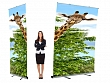 Giant Roll up Banners 3M Tall