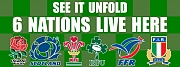 6 Nations Banners