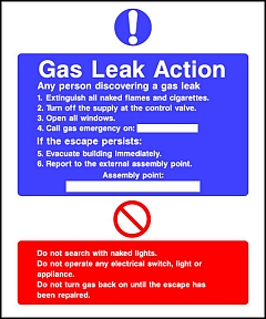 Gas Leak Action