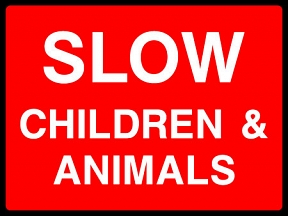 Slow Children & Animals
